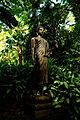Buddha Statue @ Lyon Arboretum (5170643307).jpg