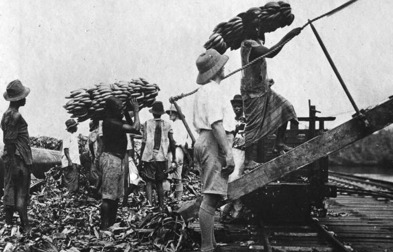 Bundesarchiv Bild 137-034473, Kamerun, bei Tiko, Bananen-Verladung