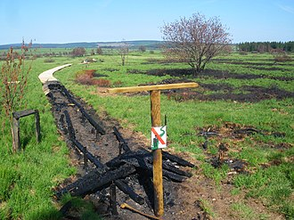 High Fens - Burnt path in Helle Valley in High Fens, in May 2011, one month after the fire