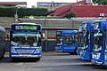 Bus Buenos Aires 53 2.jpg