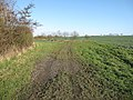 Byway to Carlton and Willingham Green - geograph.org.uk - 1636794.jpg