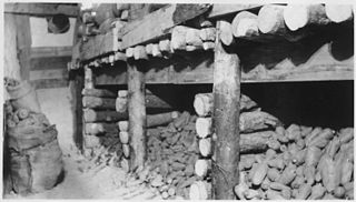 Root cellar structure, usually underground or partially underground, used for storage of vegetables, fruits, nuts, or other foods