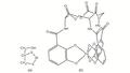 CNX Chem 19 02 BalEnt.png