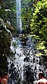 Cachoeira Paraíso. - panoramio.jpg