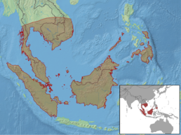 Calliophis intestinalis distribution.png