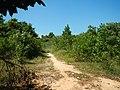 Cambodia 2014 - panoramio (18).jpg