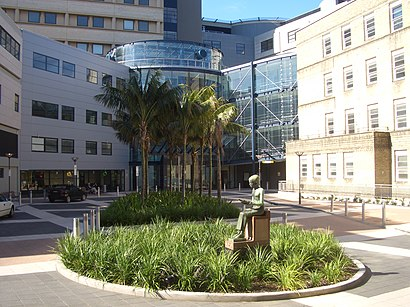 How to get to Royal Prince Alfred Hospital with public transport- About the place