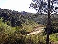 Campina Grande do Sul - State of Paraná, Brazil - panoramio (1).jpg