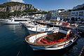 Capri - 7102.jpg