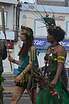 Carnaval FDF 2019 15.jpg