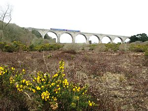 Maritime Line - A train crosses Carnon viaduct on its way towards Truro