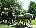 Carriage ride, Arlington Court - geograph.org.uk - 879914.jpg