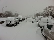 Cars snowed in on Lake Shore Drive in Chicago feb 2 2011.JPG