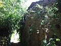 Casa diroccata di Cecani di sopra - panoramio.jpg