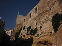 Castell d'El Catllar 7.jpg