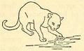 Cat fishing.png