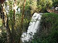 Cataratas do Iguaçu - panoramio (8).jpg