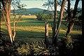 Catoctin Mountain Park, Maryland (fa5ca3a5-e2a0-4836-91e3-c90b7c2f2a77).jpg