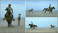 Cavalgada no Laranjal.jpg