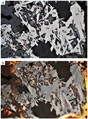 Cerromojonite associated with other minerals.png