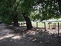 Chancón, caballos. - panoramio - R.A.T.P..jpg