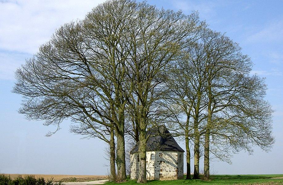 Ensemble formé par la chapelle du Chêneau et ses abords