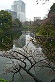 Chidorigafuchi05s2910.jpg