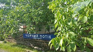 Chorny Potok train stop.jpg