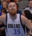 Chris Kaman Mavs.jpg