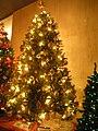 Christmas Tree Ukraine (MSI).JPG