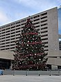 Christmas Tree at Toronto City Hall - 20190101.jpg