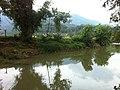 Citanduy - panoramio.jpg