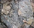 Clast-rich mixtite (Coleman Member, Gowganda Formation, Paleoproterozoic, ~2.3 Ga; Percival Lake roadcut, Ontario, Canada) 17 (47673935802).jpg