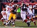 Cleveland Browns vs. Washington Redskins (20394219698).jpg