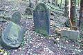 Cmentarz żydowski w Będzinie33.jpg