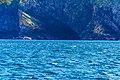 Coastline St John Newfoundland (41321613102).jpg