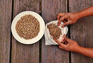 Coffee - Coffee beans