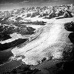 Columbia Glacier, Terentiev Lake, Calving Terminus and Distributaries, August 24, 1964 (GLACIERS 1062).jpg