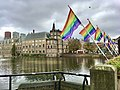 Coming-Out Day 2020 in The Hague - Rainbow flags at Hofvijver next to the national parlement of the Netherlands - img 07.jpg