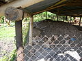 Composting site for drying faeces (4028289939).jpg