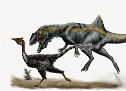 Concavenator chasing Pelecanimimus by durbed.jpg