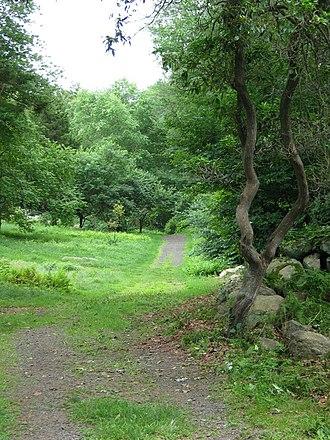 Connecticut College Arboretum - Image: Conn Coll Arb 1