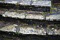 Conservatory steps in Nuthurst, West Sussex, England.jpg