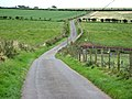 Country road near Dalton - geograph.org.uk - 568928.jpg