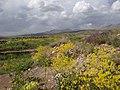 Countryside around Takht-e Soleiman - Western Iran - 02 (7421809362).jpg