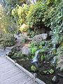 Crystal Springs Rhododendron Garden, Portland (2013) - 21.JPG