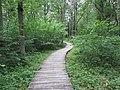 Dūkštų sen., Lithuania - panoramio (39).jpg