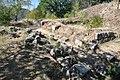 Dacian Fortress of Capalna 028.jpg