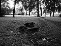 Danvikens kyrkogård 2.jpg