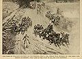 Dash of Wilcox's Battery at Gettysburg, July 2, 1863.jpg